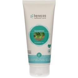 Benecos Shampoo Melissa & Ortica
